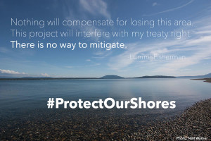 """Nothing will compensate for losing this area. This project will interfere with my treaty right. There is no way to mitigate. - Lummi Fisherman #ProtectOurShores."""