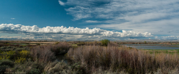 Yakima Valley by Rudy Salakory